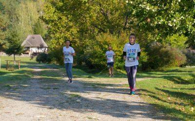 Valcea-Forest-Run-2020-06